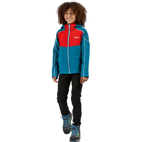 Regatta Acidity IV Soft Shell Jacke Kinder olympic teal/fiery red/gulfsteam reflective